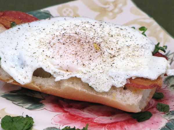 Open Faced Egg and Bacon Sandwich